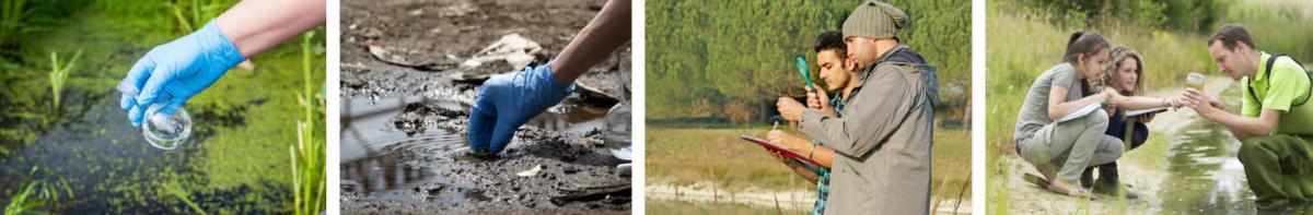 экологические исследования в Краснодаре – низкие цены, высокое качество услуг